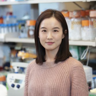 Kentsis Lab_Research Fellow